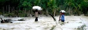 Lahan kebun banjir 031112