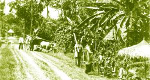 Jalan pos di Mandailing, 1890