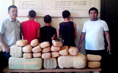 Tiga tersangka pembawa ganja di Polres Madina