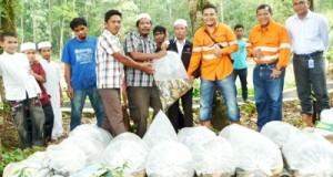 Penyerahan bibit dan alat budidaya ikan oleh PT.SMGP kepada petani di Purba Lamo