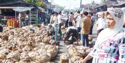 Penjualan karet di Kotanopan