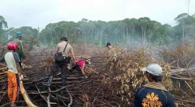 Petugas berada di lahan yang terbakar