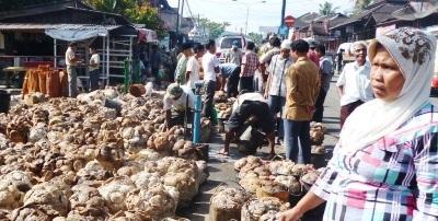 Penjualan karet alam di Kotanopan