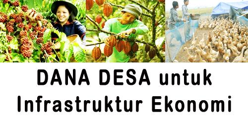 Dana Desa untuk infrastruktur ekonomi